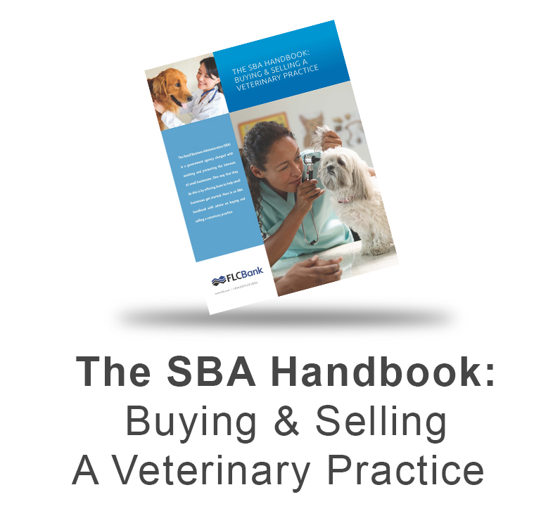 SBA Handbook: Buying & Selling a Veterinary Practice eBook Download